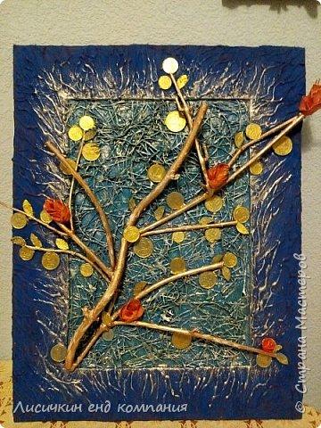 Денежные деревья фото 9