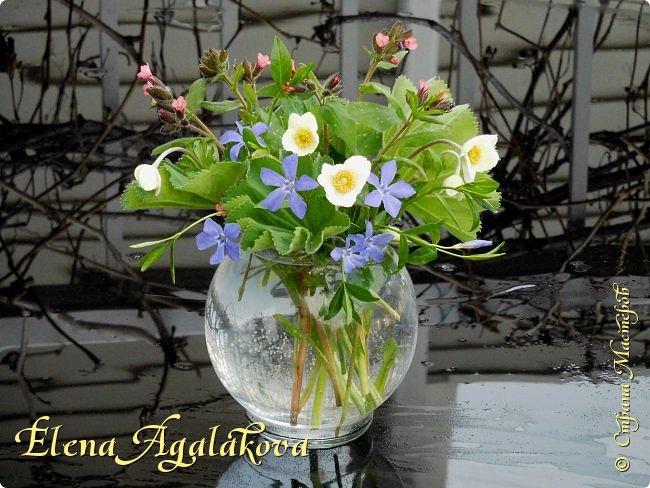 Добрый день! Сегодня я к вам снова с композициями из цветов.  Прошлым летом я решила осуществить еще одну свою мечту - научится цветочному дизайну. Очень люблю цветы, травки-муравки, деревья и вообще все растения. Очень увлекательно работать с цветами! Я взяла небольшой курс по цветочному дизайну. Дома делаю аранжировки из того что под рукой, беру цветы которые найду, даже полевые и из своего садика. Люблю использовать разные веточки, травинки...  Делюсь красотой!  фото 19