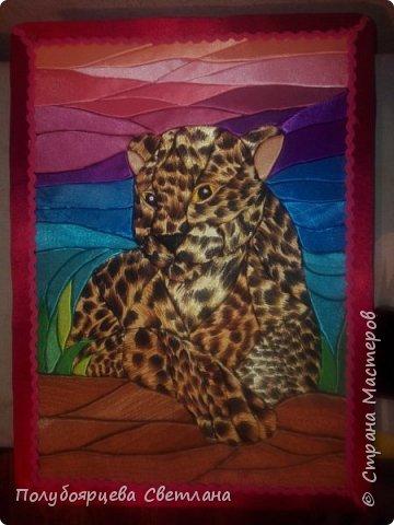 Леопард отдыхает фото 3