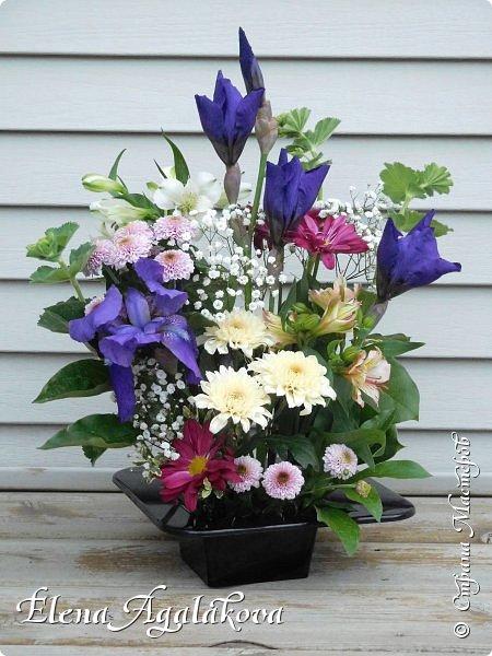 Добрый день! Сегодня я к вам снова с композициями из цветов. Прошлым летом я решила осуществить еще одну свою мечту - научится цветочному дизайну. Очень люблю цветы, травки-муравки, деревья и вообще все растения. Очень увлекательно работать с цветами! Я взяла небольшой курс по цветочному дизайну. Дома делаю аранжировки из того что под рукой, беру цветы которые найду, даже полевые и из своего садика. Люблю использовать разные веточки, травинки... Делюсь красотой!  фото 12