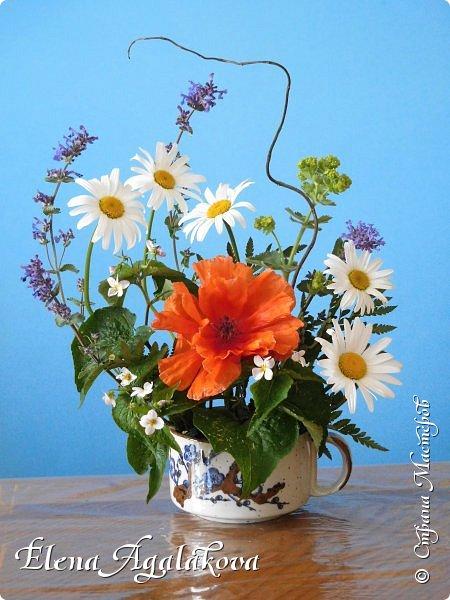Добрый день! Сегодня я к вам снова с композициями из цветов. Прошлым летом я решила осуществить еще одну свою мечту - научится цветочному дизайну. Очень люблю цветы, травки-муравки, деревья и вообще все растения. Очень увлекательно работать с цветами! Я взяла небольшой курс по цветочному дизайну. Дома делаю аранжировки из того что под рукой, беру цветы которые найду, даже полевые и из своего садика. Люблю использовать разные веточки, травинки... Делюсь красотой!  фото 4
