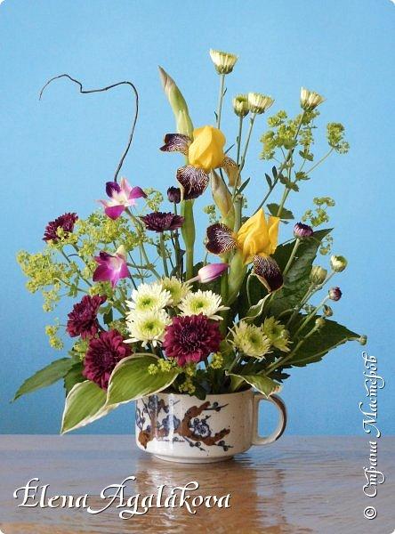 Добрый день! Сегодня я к вам снова с композициями из цветов. Прошлым летом я решила осуществить еще одну свою мечту - научится цветочному дизайну. Очень люблю цветы, травки-муравки, деревья и вообще все растения. Очень увлекательно работать с цветами! Я взяла небольшой курс по цветочному дизайну. Дома делаю аранжировки из того что под рукой, беру цветы которые найду, даже полевые и из своего садика. Люблю использовать разные веточки, травинки... Делюсь красотой!  фото 11