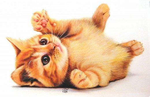 Дорогие кошатники, поздравляю вас с Международным Днём кошек! Чуть не прозевала такой особенный праздник))). У меня сейчас двое этих чудесных животных: кошечка Афина и кот Семён. Но я решила не показывать фотографии своих любимцев, а напомнить вам мои кошачьи портреты в сухой пастели.  фото 4
