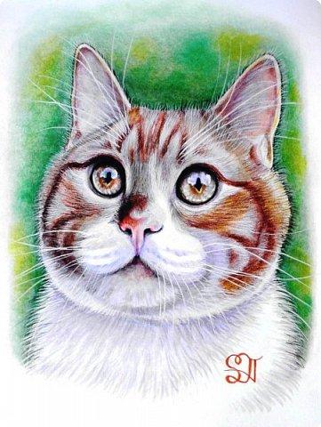 Дорогие кошатники, поздравляю вас с Международным Днём кошек! Чуть не прозевала такой особенный праздник))). У меня сейчас двое этих чудесных животных: кошечка Афина и кот Семён. Но я решила не показывать фотографии своих любимцев, а напомнить вам мои кошачьи портреты в сухой пастели.  фото 6