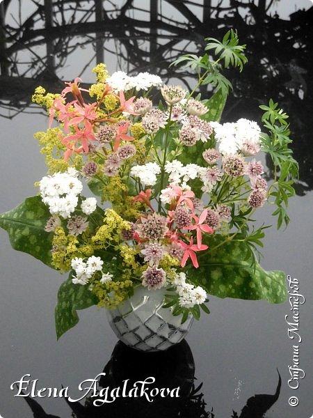Добрый день! Сегодня я к вам снова с композициями из цветов. На этот раз много простых, полевых цветов... Я их обожаю за нежность и очарование! Прошлым летом я решила осуществить еще одну свою мечту - научится цветочному дизайну. Очень люблю цветы, травки-муравки, деревья и вообще все растения. Очень увлекательно работать с цветами! Я взяла небольшой курс по цветочному дизайну. Дома делаю аранжировки из того что под рукой, беру цветы которые найду, даже полевые и из своего садика. Люблю использовать разные веточки, травинки... Делюсь красотой!   фото 6