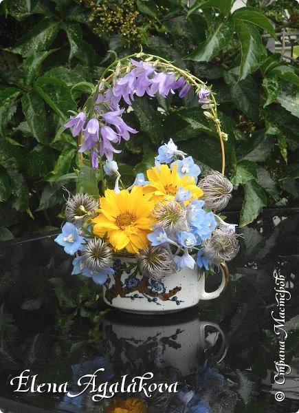 Добрый день! Сегодня я к вам снова с композициями из цветов. На этот раз много простых, полевых цветов... Я их обожаю за нежность и очарование! Прошлым летом я решила осуществить еще одну свою мечту - научится цветочному дизайну. Очень люблю цветы, травки-муравки, деревья и вообще все растения. Очень увлекательно работать с цветами! Я взяла небольшой курс по цветочному дизайну. Дома делаю аранжировки из того что под рукой, беру цветы которые найду, даже полевые и из своего садика. Люблю использовать разные веточки, травинки... Делюсь красотой!   фото 3