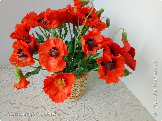 Добрый вечер мастера и мастерицы!!!Наконец то я закончила лепку цветов для полевого букета!!Вот такие маки расцвели дождливой осенней порой. фото 3