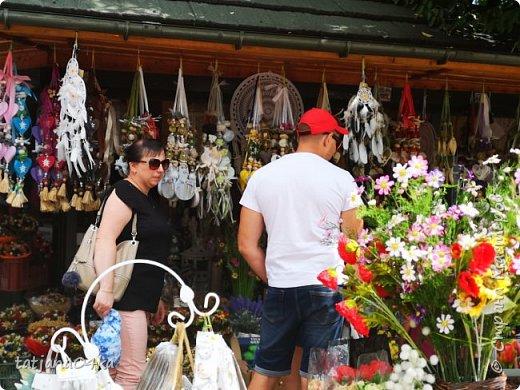 В середине августа побывала с туристической группой в Польше ,в городе Закопане,,,,Там достаточно большой рынок,где продавалась местная продукция,сыры,кожаные изделия,,,А в одном из отделов,,милая полячка продавала букетики из сухоцветов,,ну как можно было пройти мимо? Вот напросилась и ,,,,,оставила себе  воспоминания фото 25