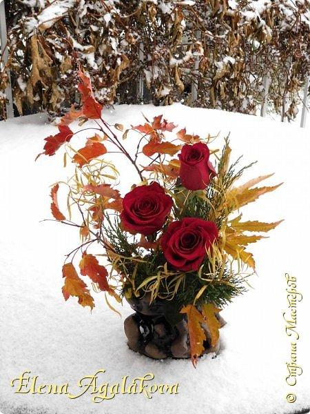 Добрый день! Сегодня я к вам снова с композициями из цветов. На этот раз много осенних композиций желто-оранжево-красных...  Вот уже больше года я занимаюсь цветочным дизайном. Очень люблю цветы, травки-муравки, деревья и вообще все растения. Очень увлекательно работать с цветами! Я взяла небольшой курс по цветочному дизайну. Дома делаю аранжировки из того что под рукой, беру цветы которые найду, даже полевые и из своего садика. Люблю использовать разные веточки, травинки... Некоторые оранжировки из цветочного магазина где я работаю. Делюсь красотой! фото 17