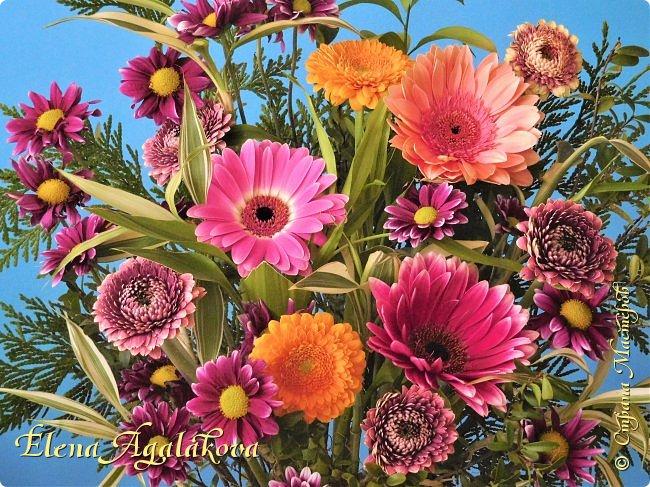 Добрый день! Сегодня я к вам снова с композициями из цветов.  Вот уже больше года я занимаюсь цветочным дизайном. Очень люблю цветы, травки-муравки, деревья и вообще все растения. Очень увлекательно работать с цветами! Я взяла небольшой курс по цветочному дизайну. Дома делаю аранжировки из того что под рукой, беру цветы которые найду, даже полевые и из своего садика. Сейчас у нас уже холодно, но как же радуют цветы дома! Люблю использовать разные веточки, травинки... Некоторые оранжировки из цветочного магазина где я работаю. Делюсь красотой! фото 15
