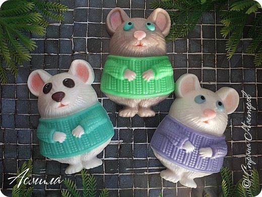 Быстрыми шагами приближается Новый год. И хотя по восточному календарю ещё правит свинья, но мыши уже активизировались. Шуршат, пищат, да лезут.. фото 5