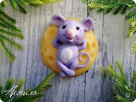 Быстрыми шагами приближается Новый год. И хотя по восточному календарю ещё правит свинья, но мыши уже активизировались. Шуршат, пищат, да лезут.. фото 1