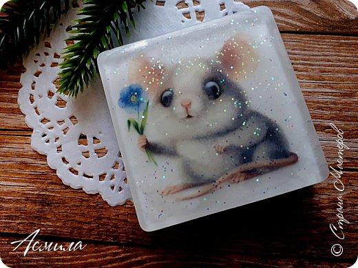 Быстрыми шагами приближается Новый год. И хотя по восточному календарю ещё правит свинья, но мыши уже активизировались. Шуршат, пищат, да лезут.. фото 10