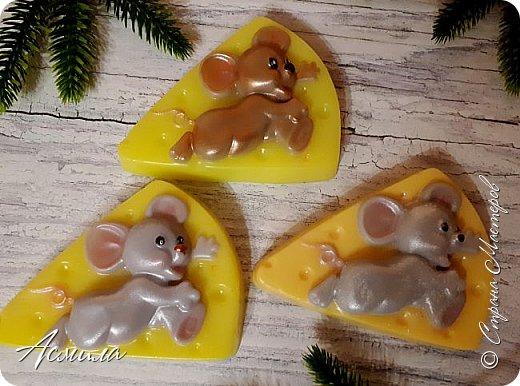 Быстрыми шагами приближается Новый год. И хотя по восточному календарю ещё правит свинья, но мыши уже активизировались. Шуршат, пищат, да лезут.. фото 7