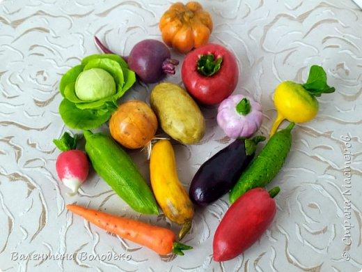 Добрый день мастера и мастерицы !!!Посмотрите какой урожай овощей я слепила в качестве пособия логопеду для занятий с детками в садике. фото 3