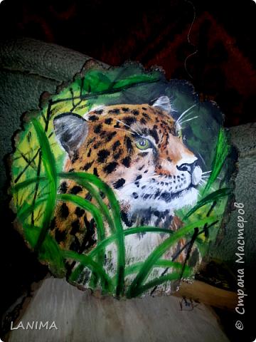 Очередное животное из семейства кошачьих нарисованно на спиле.