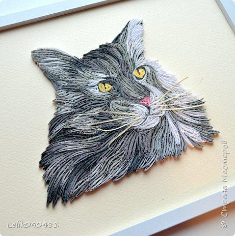 Похожий котик получился?