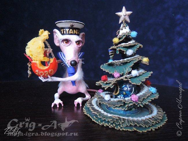 Всем доброго дня! Сегодня в преддверии Нового года мне хочется рассказать вам о нашем домашнем любимце, питомце, домашней белой крысе, которая в этом году стала символом наступающего года. Вернее, это и не крыса, а крыс.