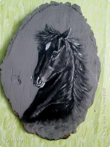 портретный рисунок коня на спиле дерева...