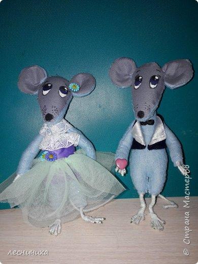 Огромное спасибо всем жителям СМ за идеи и вдохновение!  Эти мышата уехали к хорошей девочке с чудесным именем Злата!