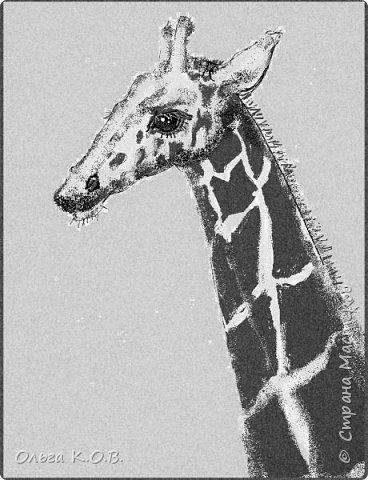 Некоторые Черно-белые иллюстрации к книжке фото 7