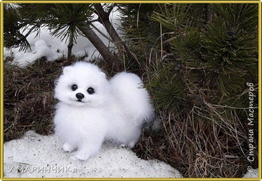 Войлочная игрушка: Собачка из шерсти .Шпиц УМКА