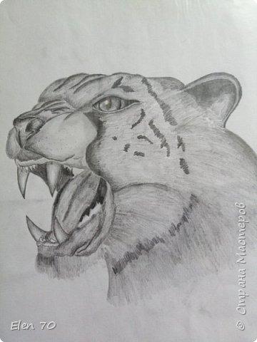 Простой карандаш, начало фото 3