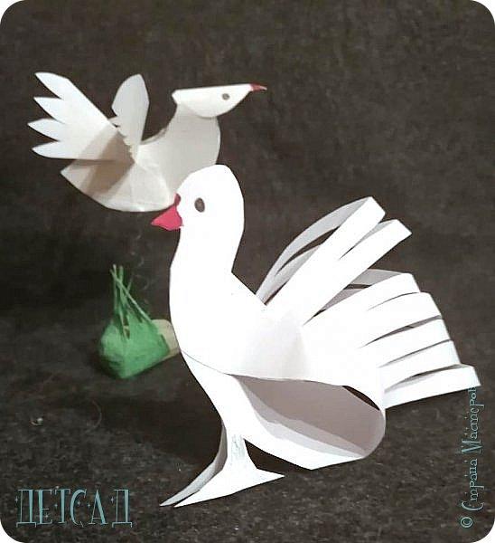 ДЕНЬ ПТИЦ!! ...голуби в технике 3D стик...