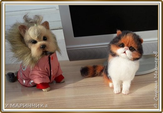 Котенок и шерсти
