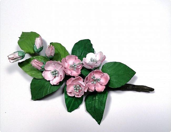 Веточка цветущей яблони. фото 1