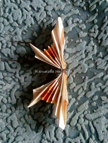 На просторах интернета наткнулась на симпатичных бабочек, которые делаются просто, но смотрятся оригинально. Попробуем сделать? фото 12