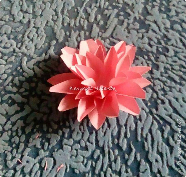 Вот какие пышные , или как говорят цветоводы- махровые, цветы научимся делать сегодня. фото 9
