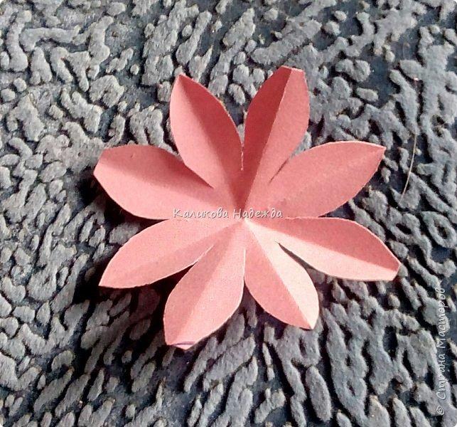 Вот какие пышные , или как говорят цветоводы- махровые, цветы научимся делать сегодня. фото 6