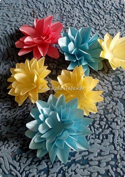 Вот какие пышные , или как говорят цветоводы- махровые, цветы научимся делать сегодня. фото 1