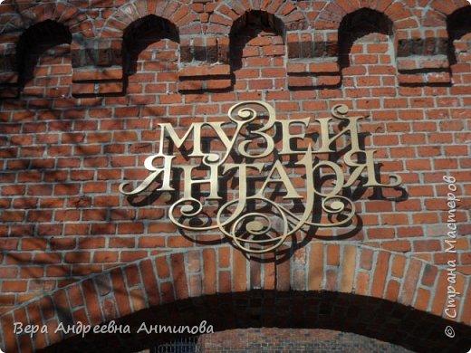 Всем доброго дня! Побывать в Калининграде и не посетить Музей янтаря, это невозможно. И вот с острова Канта мы пришли к Музею янтаря. фото 1