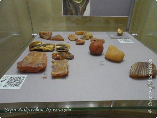 Всем доброго дня! Побывать в Калининграде и не посетить Музей янтаря, это невозможно. И вот с острова Канта мы пришли к Музею янтаря. фото 11