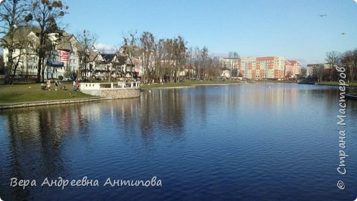 Всем доброго дня!  Мы продолжаем путешествовать по замечательному городу Калининграду. Симпатичные аллеи и парки в городе. фото 19