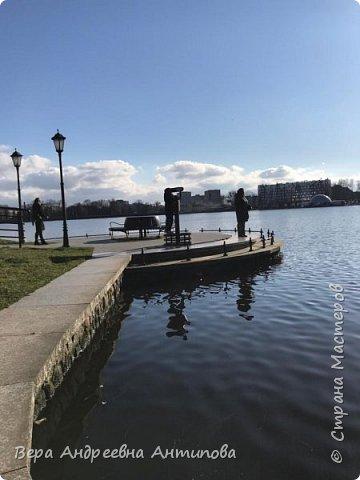 Всем доброго дня!  Мы продолжаем путешествовать по замечательному городу Калининграду. Симпатичные аллеи и парки в городе. фото 17