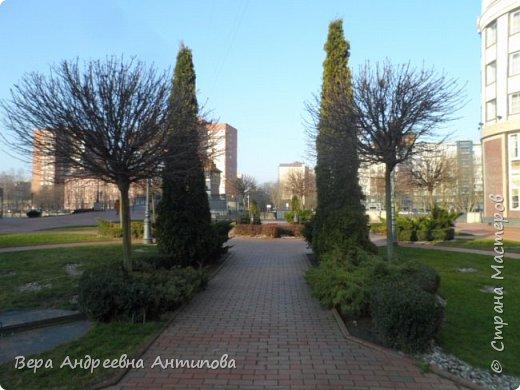 Всем доброго дня!  Мы продолжаем путешествовать по замечательному городу Калининграду. Симпатичные аллеи и парки в городе. фото 1