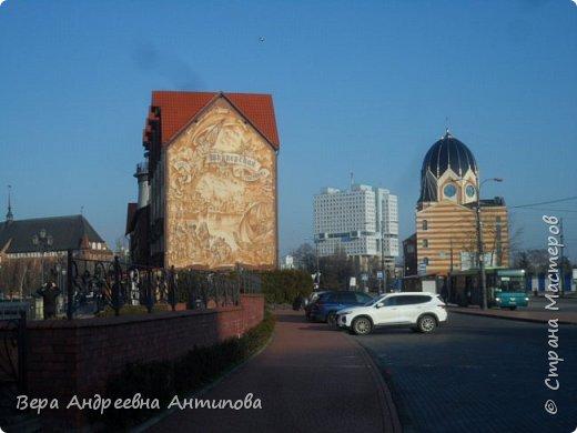 Всем доброго дня!  Мы продолжаем путешествовать по замечательному городу Калининграду. Симпатичные аллеи и парки в городе. фото 5