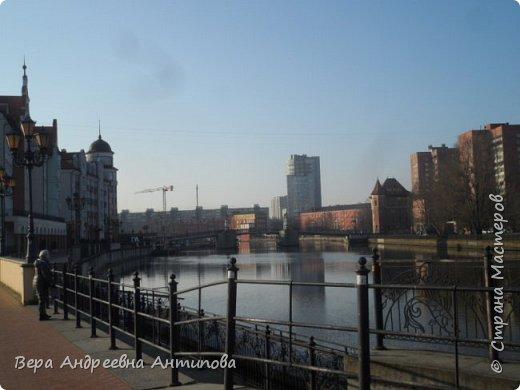 Всем доброго дня!  Мы продолжаем путешествовать по замечательному городу Калининграду. Симпатичные аллеи и парки в городе. фото 15
