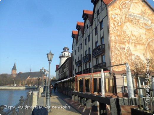 Всем доброго дня!  Мы продолжаем путешествовать по замечательному городу Калининграду. Симпатичные аллеи и парки в городе. фото 7