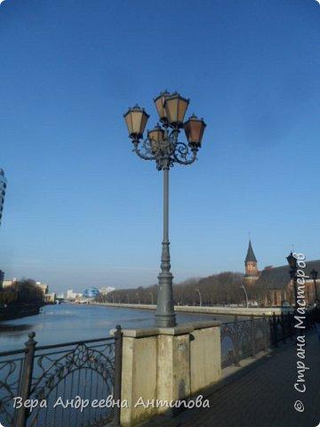Всем доброго дня!  Мы продолжаем путешествовать по замечательному городу Калининграду. Симпатичные аллеи и парки в городе. фото 9