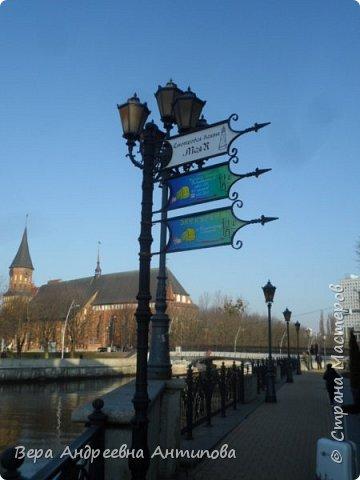 Всем доброго дня!  Мы продолжаем путешествовать по замечательному городу Калининграду. Симпатичные аллеи и парки в городе. фото 10