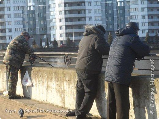 Всем доброго дня!  Мы продолжаем путешествовать по замечательному городу Калининграду. Симпатичные аллеи и парки в городе. фото 16