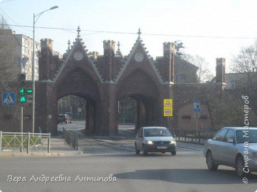 Всем доброго дня!  Мы продолжаем путешествовать по замечательному городу Калининграду. Симпатичные аллеи и парки в городе. фото 24