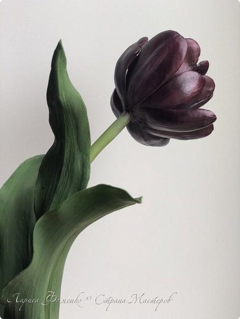 Тюльпан Black Hero 🌷из полимерной глины🌷🌷🌷 фото 6