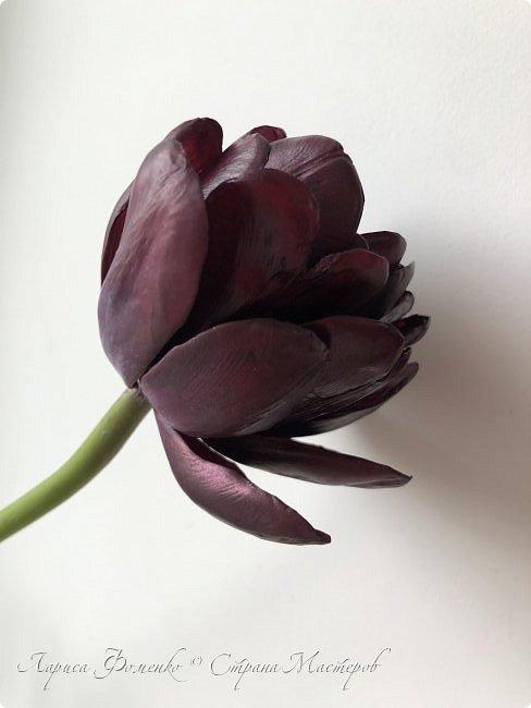 Тюльпан Black Hero 🌷из полимерной глины🌷🌷🌷 фото 3