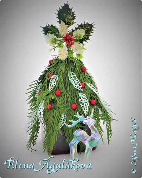 Добрый день! С наступающим Новым годом и Рождеством!  Сегодня я к вам снова с композициями из живых цветов, на этот раз новогодними. фото 6