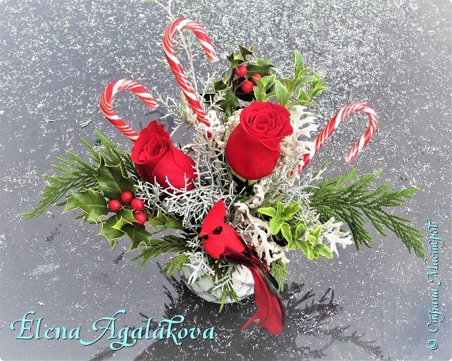 Добрый день! С наступающим Новым годом и Рождеством!  Сегодня я к вам снова с композициями из живых цветов, на этот раз новогодними. фото 2
